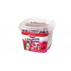 خوراكي كاسه اي گربه حاوي ماهي سالمون به همراه امگا 3 براي سلامت قلب و رگ خوني 75 گرمي
